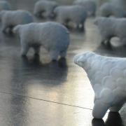 安田暖々子|羊の温度|2006